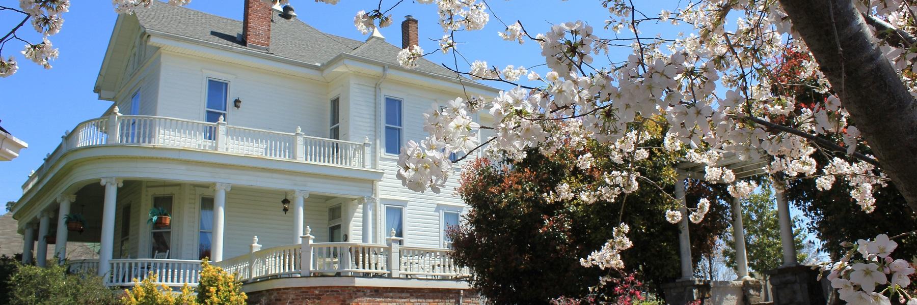 Spring Street Inn Luxury Bed And Breakfast In Hot Springs Arkansas